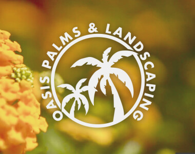 Oasis Palms & Landscaping